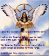 American Indian Angel 100