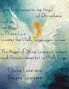 Angel Marina 100