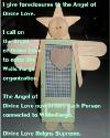 Screen Angel 100