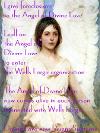 Angel Classic 100